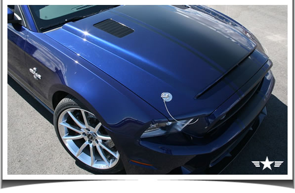 Ford Mustang Gt500 Super Snake. 2010 Ford Mustang Shelby GT500